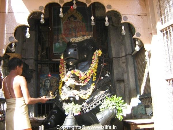 Nandi, Nanjanagudu