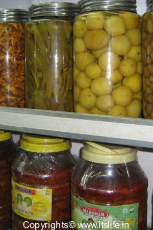 travel-rajasthan-food2-4
