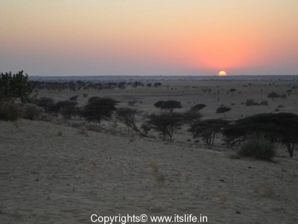 Sam Sand Dunes, Jaisalmer, Rajasthan