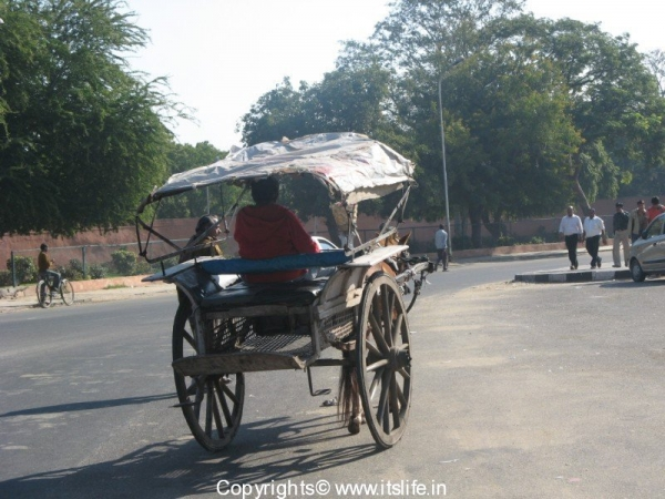 Types of Transport in Rajasthan