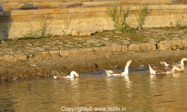 Garisisar lake - Rajasthan