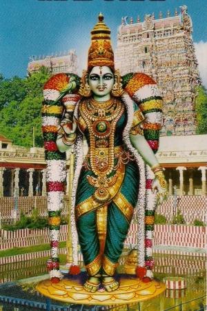 Shri Madurai Meenakshi