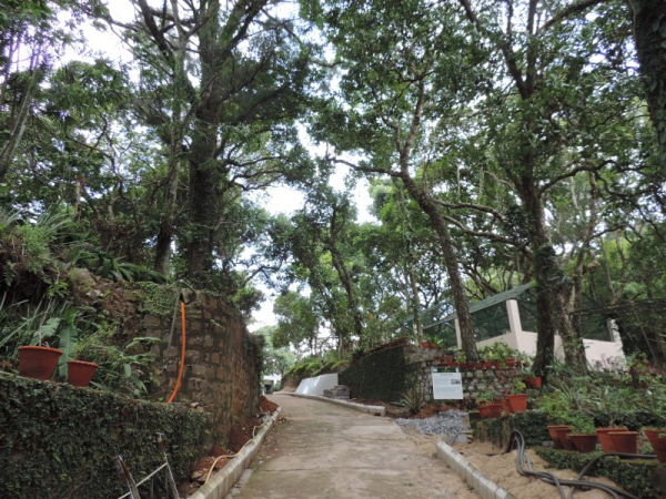 Yercaud Botanical Gardens