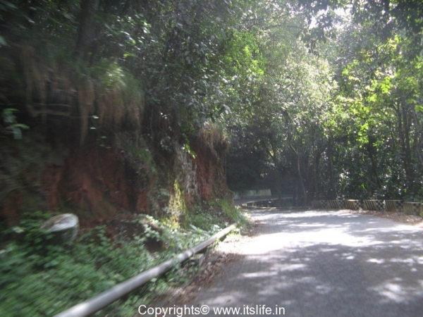Dolphin\'s Nose view point, Coonoor