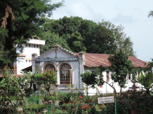 Shembaganur Museum of Natural History – Kodaikanal