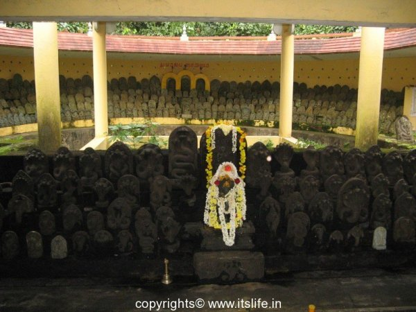 travel-dakshina-kannada-kudupu-9