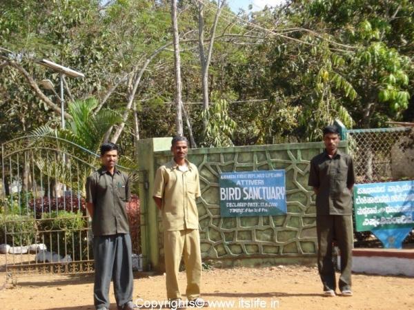 Attiveri Bird Sanctuary