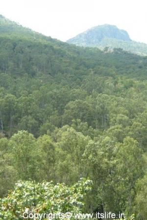 Kalhatty Falls