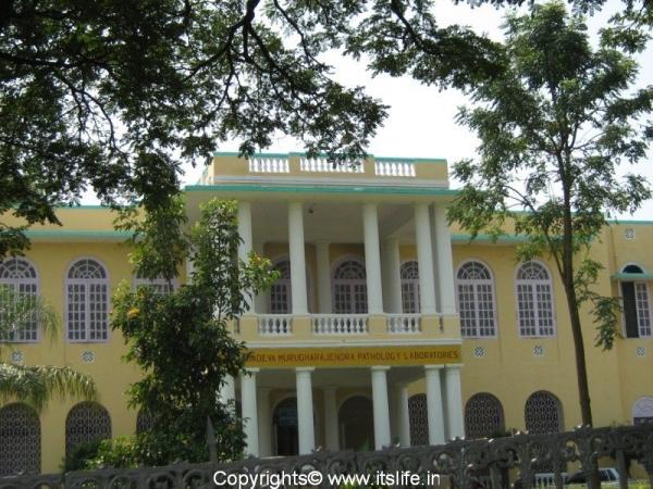 travel-mysore-heritage-buildings-cheluvamba-hospital-3.jpg
