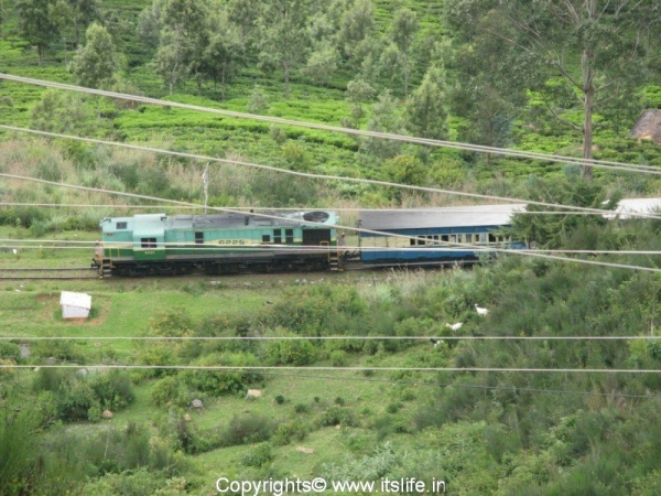 Ooty Queen - Nilgiri Mountain Railway