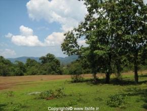 Catigao Wildlife Sanctuary