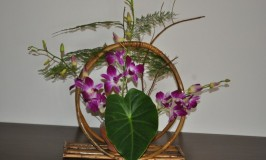 Flower Arrangement – Life Cycle