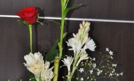 Flower Arrangement – Picture Perfect