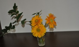Flower Arrangement – You are my sunshine