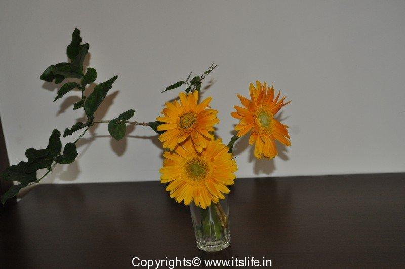 Flower arrangement ikebana gerbera arrangement for Do it yourself flower arrangements