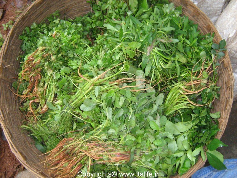 Indian Green Vegetables List Leafy Vegetables Gloss...