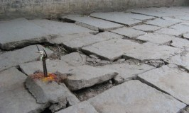 Footpath or Tyrepath