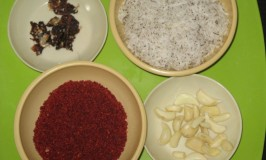 recipes-condiments-garlic-coconut-chutney-pudi-1