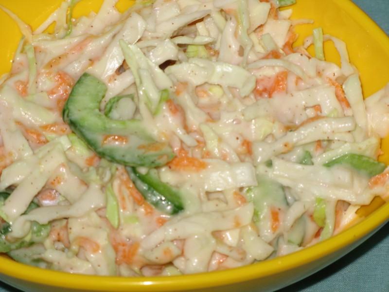 Coleslaw recipe continental recipe salad recipe vegetarian recipe coleslaw forumfinder Image collections