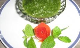 recipes-fresh-chutney-pudina-tomato-chutney