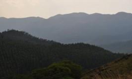 travel-chikmagalur-kemmanagundi-5