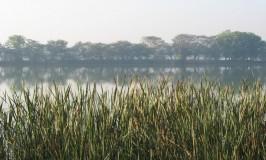 Kukkarahalli Lake – Mysore