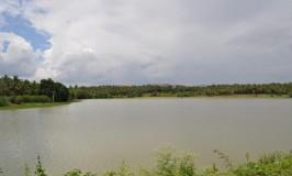 Pristine Lake – Kanakapura Lake