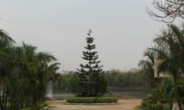 Madiwala Lake, Bengaluru