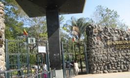 Shri Chamarajendra Zoological Gardens, Mysore Zoo