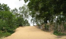 travel-talkadu-sand-dunes