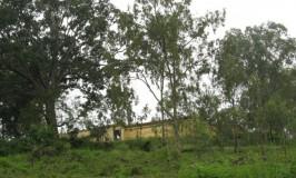 travel-tripurasundari