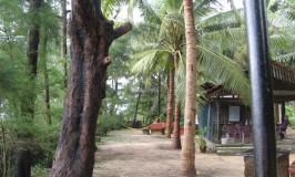 Turtle Bay Beach Resort, Maravanthe