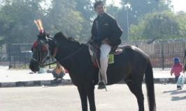 Horse back