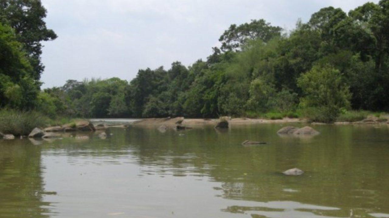 Kabini River, Kerala