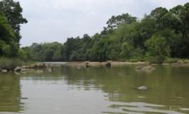 Kabini or Kapila River