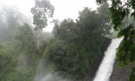 Soochipara Waterfalls