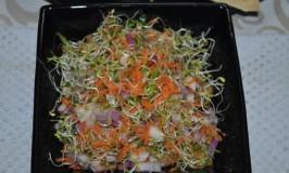 Alfalfa Sprouts Salad