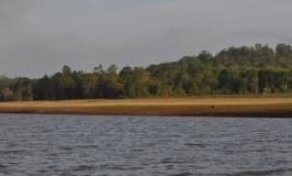 Kabini Reserve
