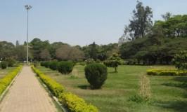 Cubbon Park – Bangalore
