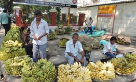 Banana Vendors in Mysore