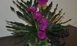 Flower Arrangement using Carnations