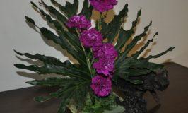 Sphinx Flower Arrangement