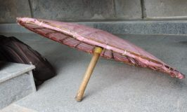 Adi Shankaracharya Umbrella