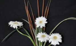 Flower arrangement - Purity