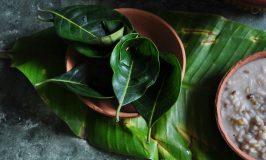 Jackfruit Leaves Spoon